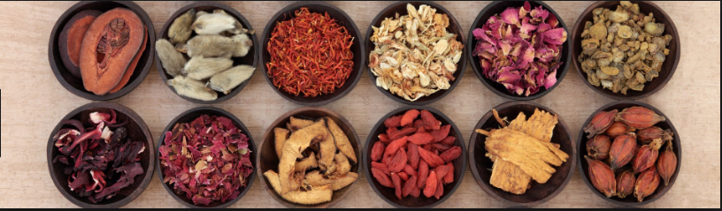 Chinese Herbal Medicine Therapy